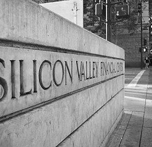 海外テレビドラマシリコンバレーSilicon Valleyビッグヘッドギャビン・ベルソンピーター・グレゴリーモニカ・ホールロン中国人ヤン